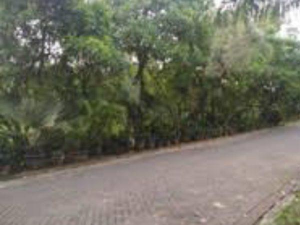 Kavling Gandeng di Katamaran Indah Pik 780m2 Aglanbd014